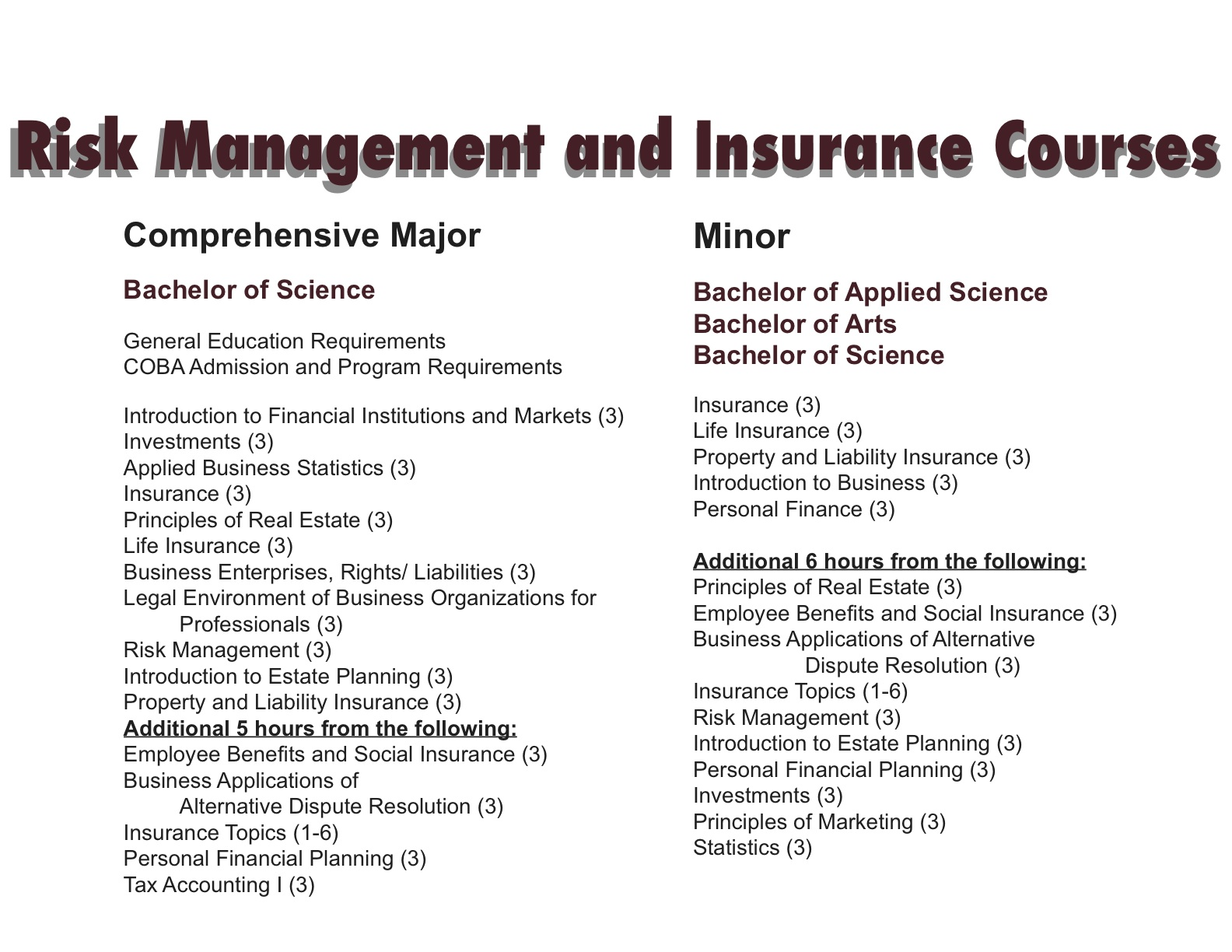 Risk Management and Insurance what are major subjects in college