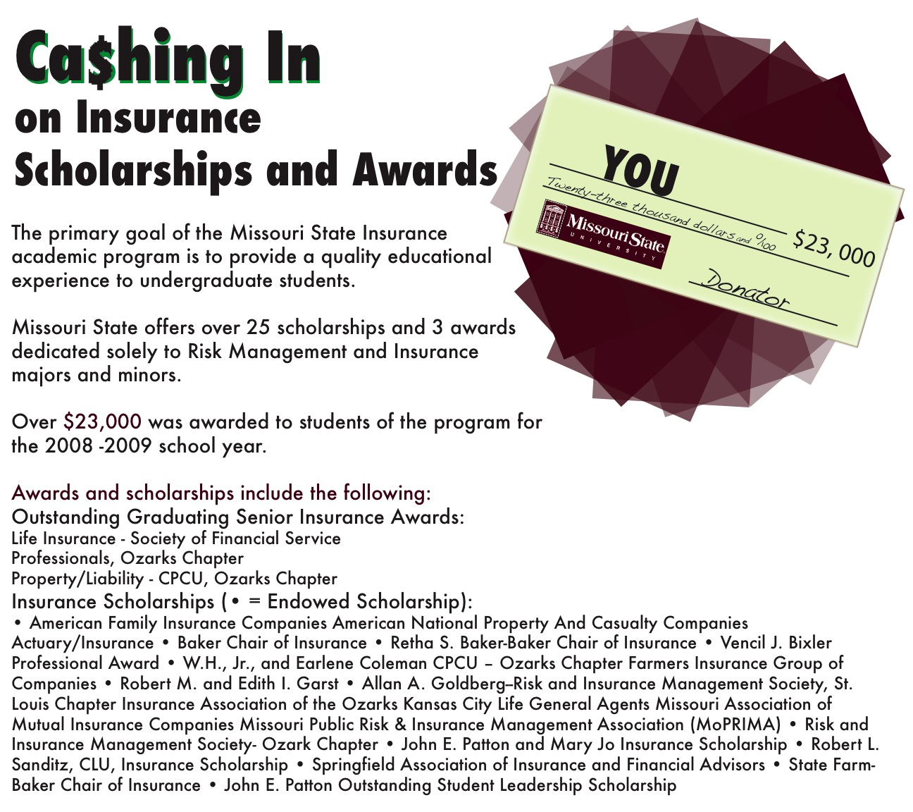 Ins Scholarships